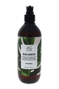Balance Apple Cider Vinegar Sulfate-Free Shampoo by AG Hair Cosmetics for Unisex - 12 oz Shampoo