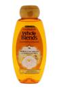 Whole Blends Moroccan Argan & Camellia Oils Extracts Illuminating Shampoo by Garnier for Unisex - 22 oz Shampoo