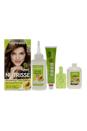 Nutrisse Nourishing Color Creme # 61 Light Ash Brown by Garnier for Unisex - 1 Application Hair Color