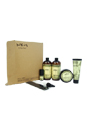 Wen Hair Care Deluxe Kit - Sweet Almond Mint by Chaz Dean for Unisex - 6 Pc Kit 2 x 16oz Wen Sweet Almond Mint Cleansing Conditioner, 4oz Wen Sweet Almond Mint Re Moist Intensive Hair Treatment, 4oz Wen Sweet Almond Mint Anti-Frizz Styling Creme, 0.35oz Wen Sweet Almond Mint Texture Balm, Wide-Tooth Comb