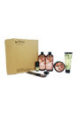 Wen Hair Care Deluxe Kit - Pomegranate by Chaz Dean for Unisex - 6 Pc Kit 2 x 16oz Wen Pomegranate Cleansing Conditioner, 4oz Wen Pomegranate Re Moist Intensive Hair Treatment, 4oz Wen Sweet Almond Mint Anti-Frizz Styling Creme, 0.35oz Wen Sweet Almond Mint Texture Balm , Wide-Tooth Comb