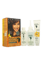 Natural Instincts Haircolor, Medium Brown 20 by Clairol for Women - 1 Application Hair Color