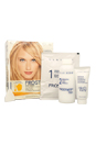 Nice 'n Easy Frost & Tip Original for Light Blonde to Dark Brown Hair by Clairol for Women - 1 Application Hair Color