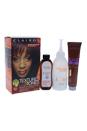 Textures & Tones Permanent Moisture-Rich Haircolor - # 3RV Plum by Clairol for Women - 1 Application Hair Color