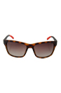 Carrera 8013/S 6XVLA - Havana Black by Carrera for Men - 58-17-125 mm Sunglasses