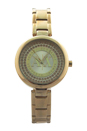 AX4221 Gold Stainless-Steel Quartz Watch by Armani Exchange for Women - 1 Pc Watch