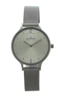 SKW2149 Anita Stainless Steel Mesh Bracelet Watch by Skagen for Women - 1 Pc Watch