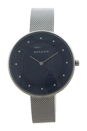 SKW2293 Gitte Stainless Steel Mesh Bracelet Watch by Skagen for Women - 1 Pc Watch